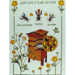 Autour d'une ruche