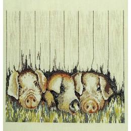 Les cochons