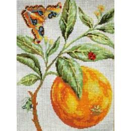 L'Orange d'après Redouté