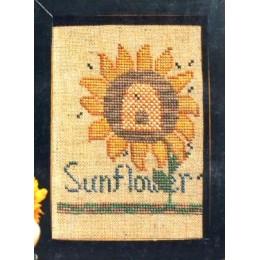 Sunflower n'Honey